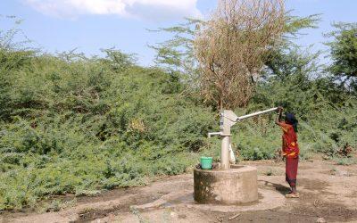 L'AMREF fournit une assistance d'urgence face à la sécheresse frappant la région d'Afar, Ethiopie